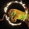 Цирки в Жирятино